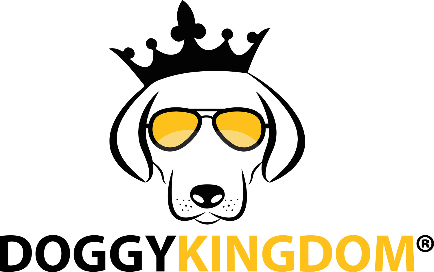 Doggykingdom Hits the Milestone: 500,000 Harnesses Sold Worldwide