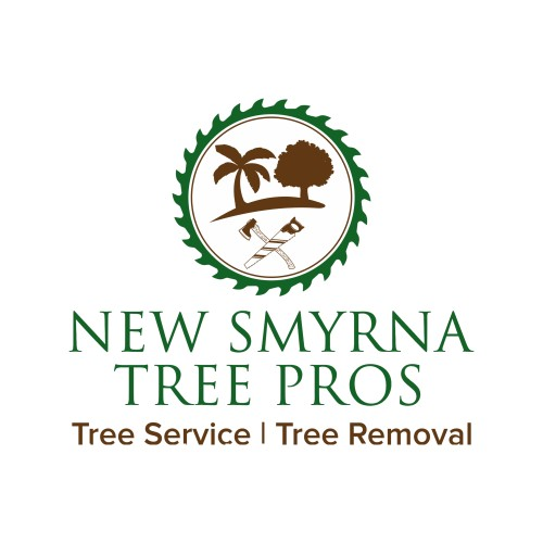New Smyrna Tree Pros is Now Performing Large Tree Removal Services in New Smyrna Beach, FL