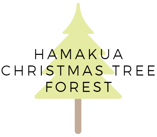 Hamakua Christmas Tree Forest Offers Live Christmas Trees in Hawaii