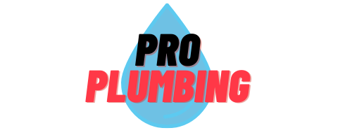 Petaluma Plumbers Respond Quickly To Shower, Toilet, And Burst Pipe Emergencies