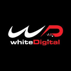 whiteDigital Individuates Itself as a 'Digital Guru' Verified by Google with a Blue Belt Certificate