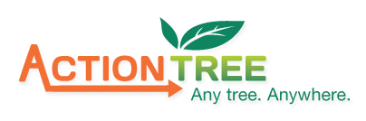 Action Tree Service Kelowna Becomes The Only Tree Service Authorized To Hoist An Arborist With A Crane