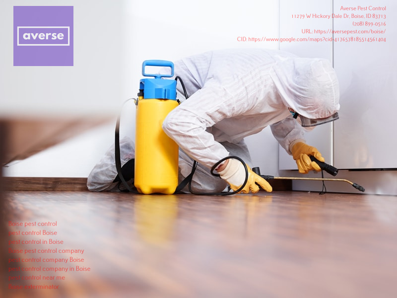 Averse Pest Control Issues Safety and Precautionary Measures for Covid-19
