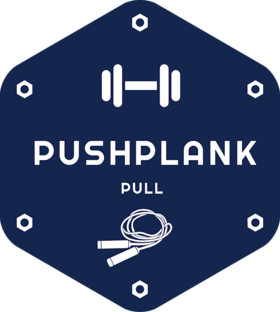 Push Plank Pull Offers Complete Fitness Solutions With Fitness Equipment, Body Training Tutorials, and Live Training Sessions