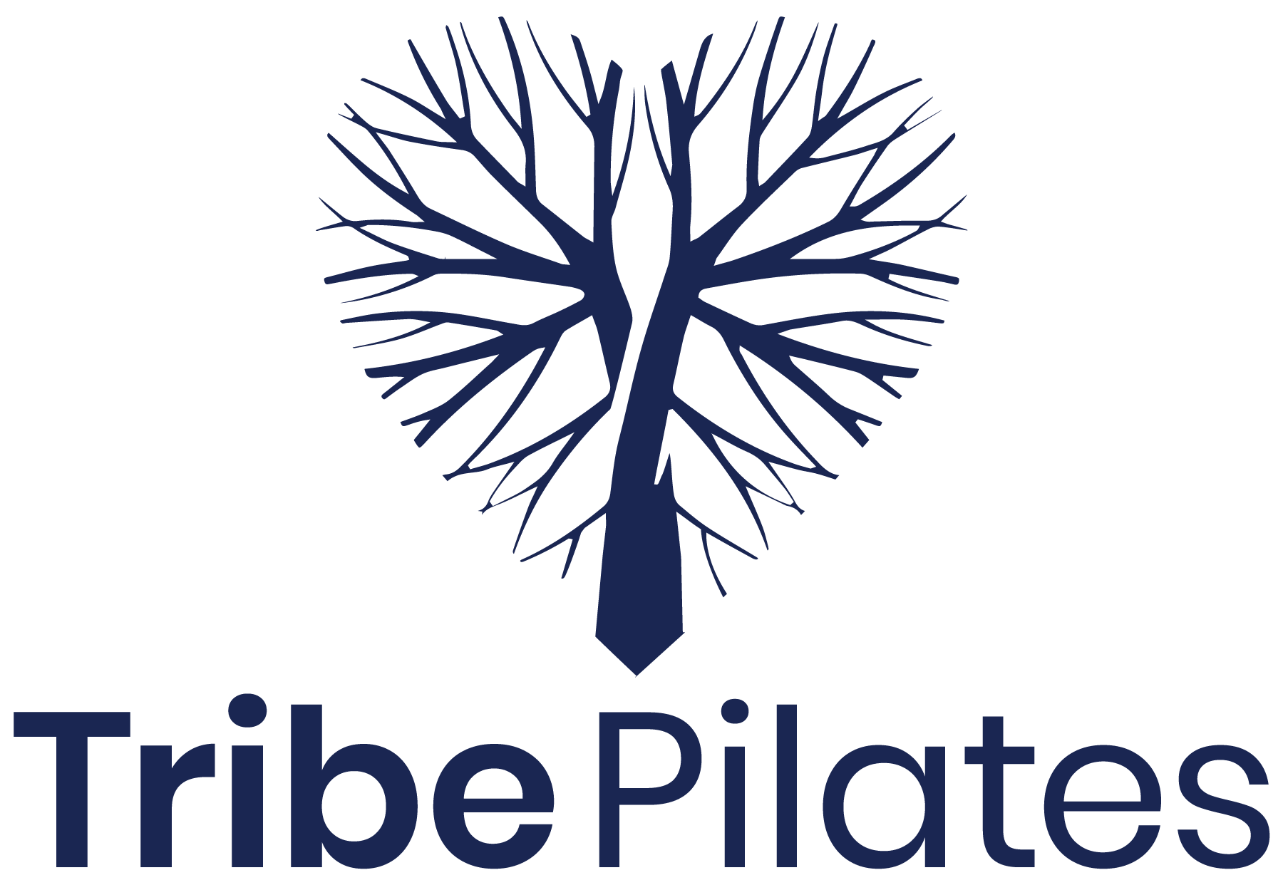 Tribe Pilates, a Top Pilates Studio in Santa Monica, CA is Voted the Most Loved New Business in the Santa Monica Area