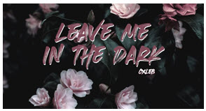 "19-Years Old Musician Caleb Antestenis Releases New Song ""Leave Me In The Dark"" & Quickly Surpasses 100,000 Streams On Spotify"