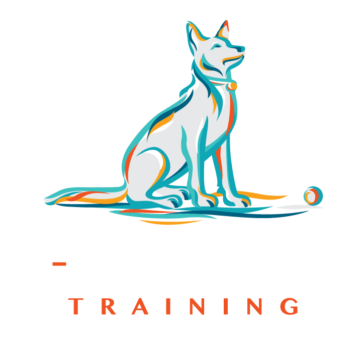 A-Z Canine Training Specialises in Dog Behaviour and Obedience Training in Vancouver