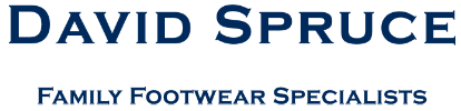 Women's Boots Online Sale at David Spruce Online Shoe Store