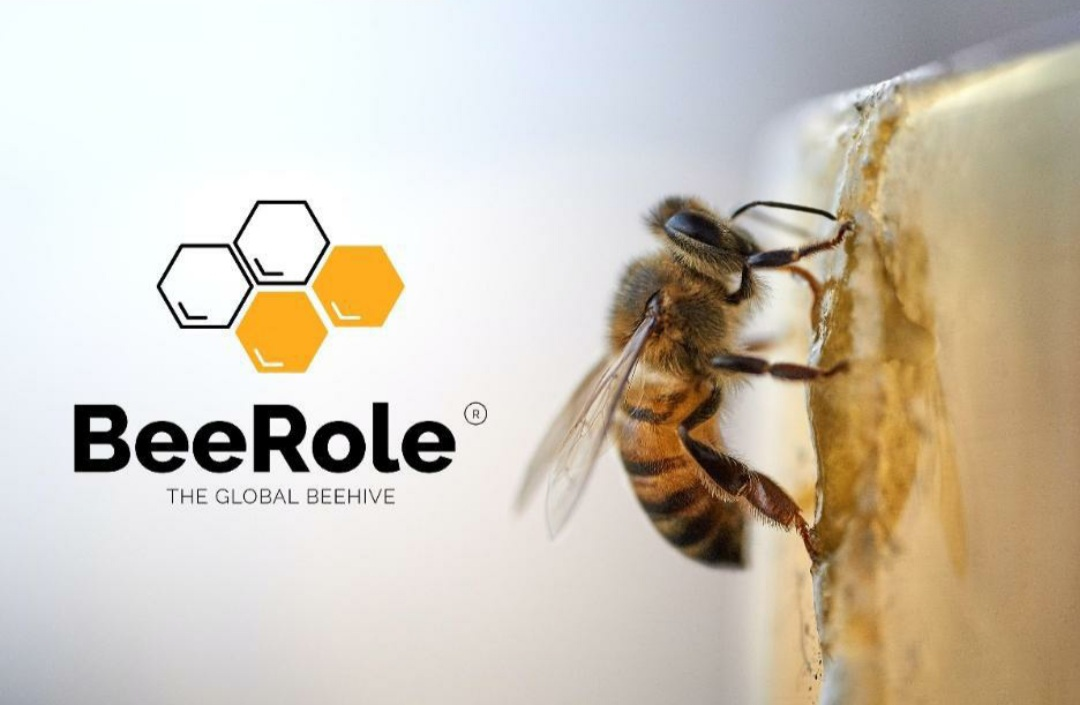 Bee Role Platform is challenging humanity to wake up now and save the planet
