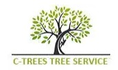 Houston Tree Service Experts Presents a New User-Friendly Website