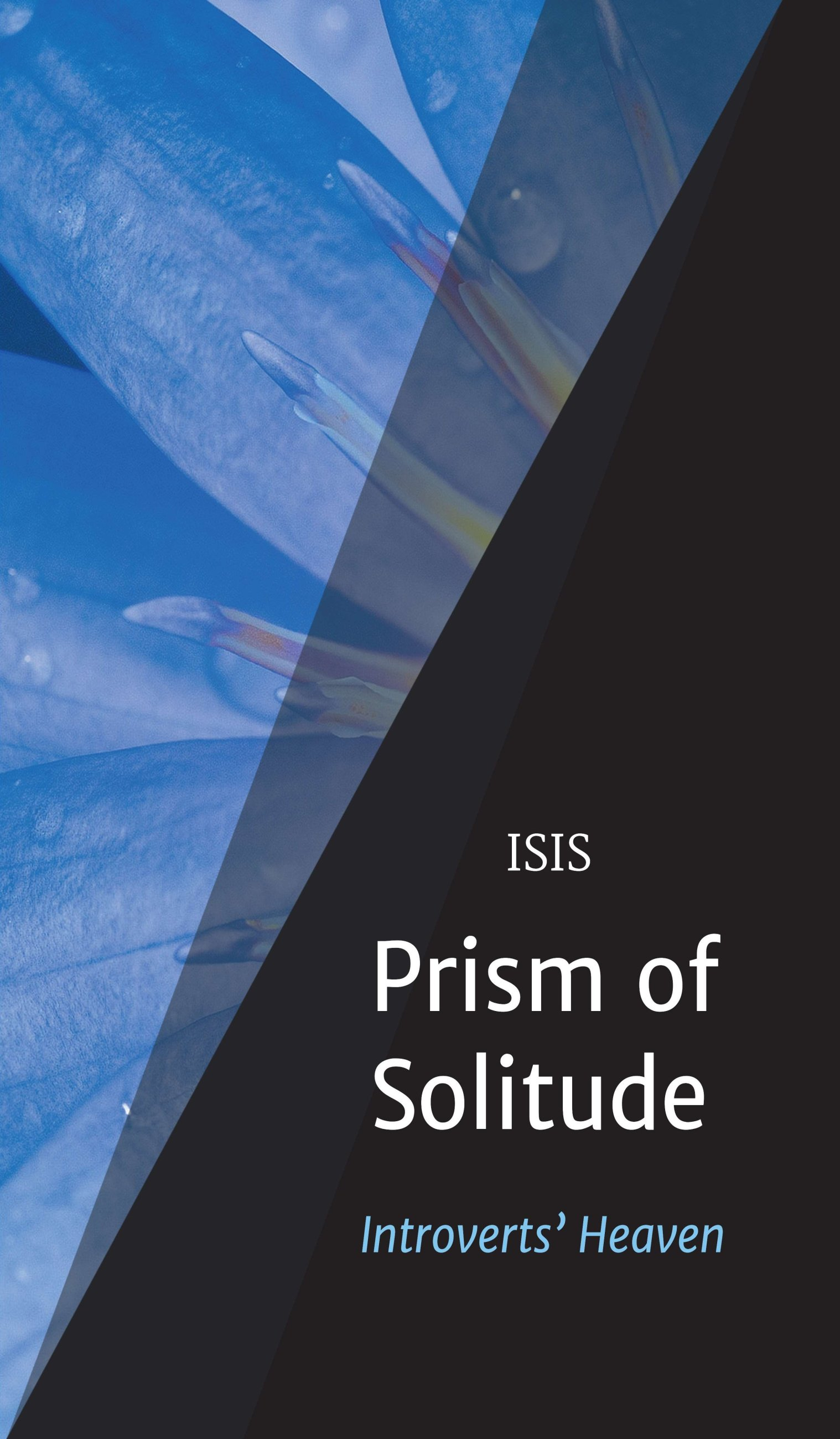 Prism of Solitude - Personal experiences of a family of introverts