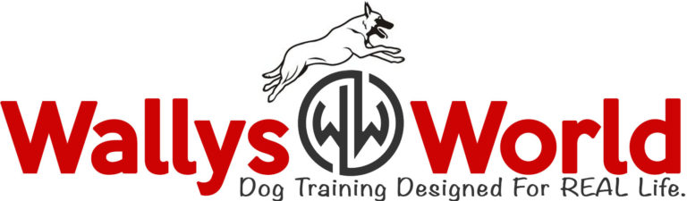 Wallys World of Dogs Has Been Providing Long Island With Dog Training for 20 Years