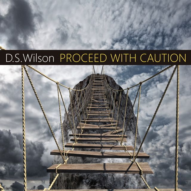 New Single From D.S. Wilson Just Released