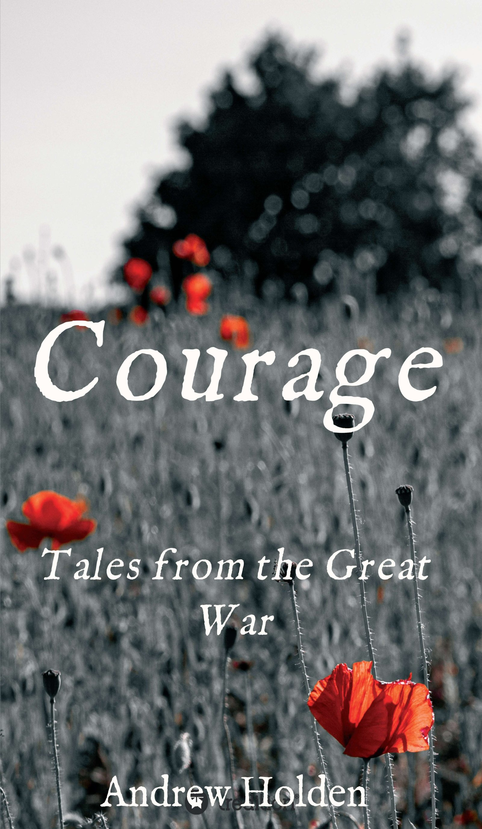 Courage - A series of short stories from the Great War