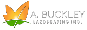A Buckley Landscaping, A Top North Attleborough Landscaper, Now Offering Lawn Installation and Lawn Care Services in North Attleborough, MA