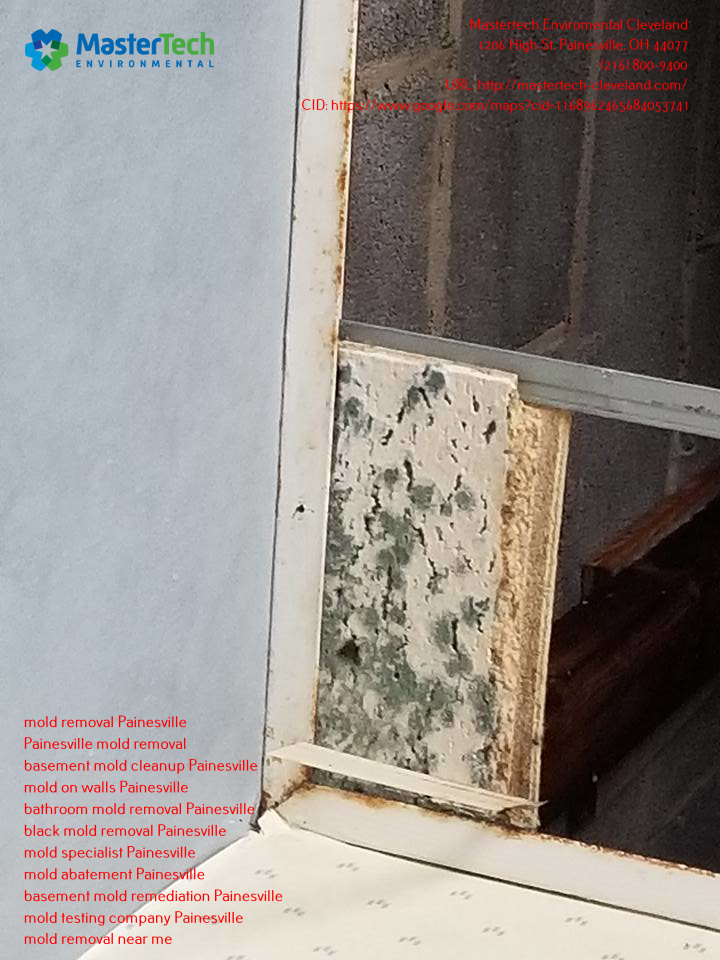 Having mold or clean-up issues? Mastertech Environmental Cleveland is just a call away.