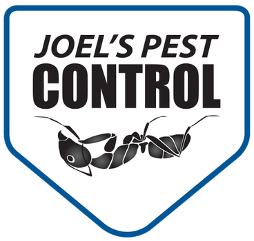 Joel's Pest Control Is The Local Solution To Protecting Homes From Pests And Rodents