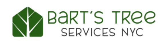 Bart's Tree Services NYC is Offering 24 Hours Emergency Tree Services in Bronx, New York
