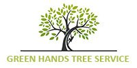 Greenville Tree Service Experts Has New Blogs Posted on Their Website Featuring Tree Services, Tree Trimming, Tree Removal, and Tree Pruning