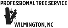 Tree Service Wilmington: Wilmington Tree Service Experts Now Providing Blog Posts on Tree care and Maintenance