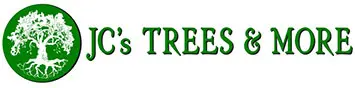 San Antonio Tree Service Experts Provides In-Depth Blog Posts on Tree Care and Maintenance