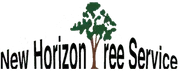 Nashville Tree Service Experts Has New Blog Posts on Tree Services