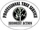 Jacksonville Tree Service Experts Has New In-Depth Blogs Posts on Tree Care