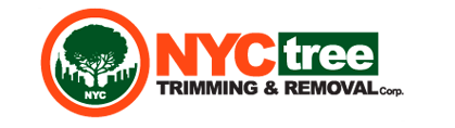 NYC Tree Trimming & Removal Corp: For Quick and Affordable Tree Service