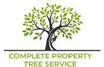 Wichita Tree Service Experts Posts Educative and Informative Blogs