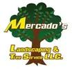 Philadelphia Tree Service Experts Is Offering Quality Tree Service In Philadelphia, PA