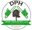 Lansing Tree Service Experts Improves Tree Services in Lansing With New Blog Posts on Their Website
