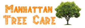Manhattan Tree Care is Rated the #1 Tree Care Service Provider in New York City, NY