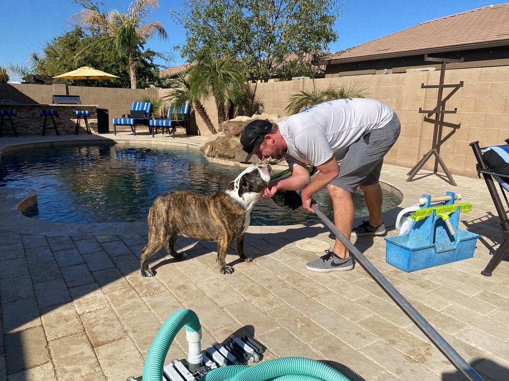 Pool Service Company in Gilbert Arizona