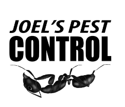 Joel's Pest Control has Pest Control Treatment Solutions that Leaves Homes and Businesses in Yuba City Pest Free