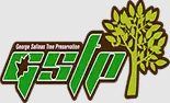 Pittsburgh Tree Service Experts Has a New Blogpost on Their Website on Tree Service Pittsburgh