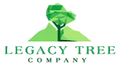 Albuquerque Tree Experts Has Announced the Launch of a New Website That Features All Tree Service Albuquerque