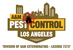 A&M Pest Control Los Angeles Offers Effective Pest Extermination Services For Los Angeles Residents