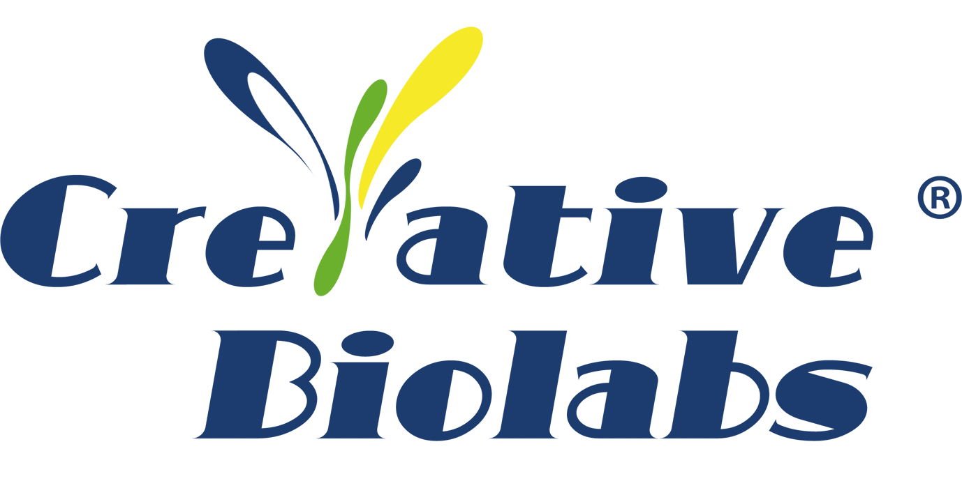 Creative Biolabs Introduces NHC and Nelfinavir-related COVID-19 Drug Discovery Services