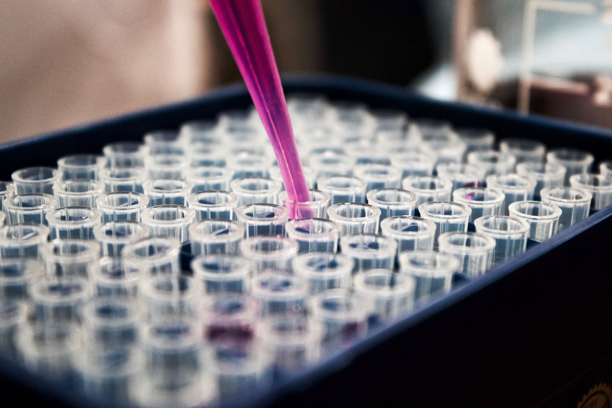 Realtimecampaign.com Promotes the Use of Primary Human Hepatocytes in Pharmacological Research