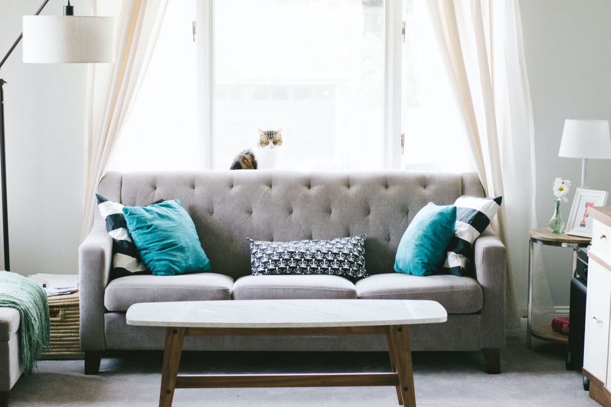 Realtimecampaign.com Discusses the Benefits of Buying Furniture Online