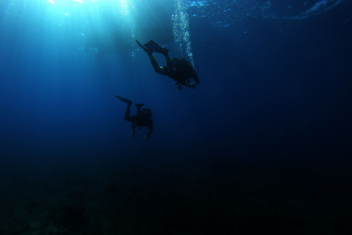 Realtimecampaign.com Explores Diving Grand Cayman and Underwater Photography