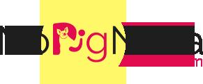 NoPigNeva is a Local Favorite Vegan Grocery Store in Woburn, MA