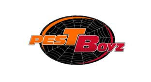 Pest Control of Spring Hill - Providing Effective Pest Control Solutions for all Pest Problems in Spring Hill, Florida