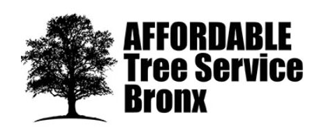 Affordable Tree Service Bronx is the Number One Tree Service Company in the Bronx