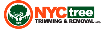 NYC Tree Trimming and Removal Corp is the Sole Provider of Tree Services In and Around New York City's Manhattan, The Bronx & Lower Westchester Areas, U.S