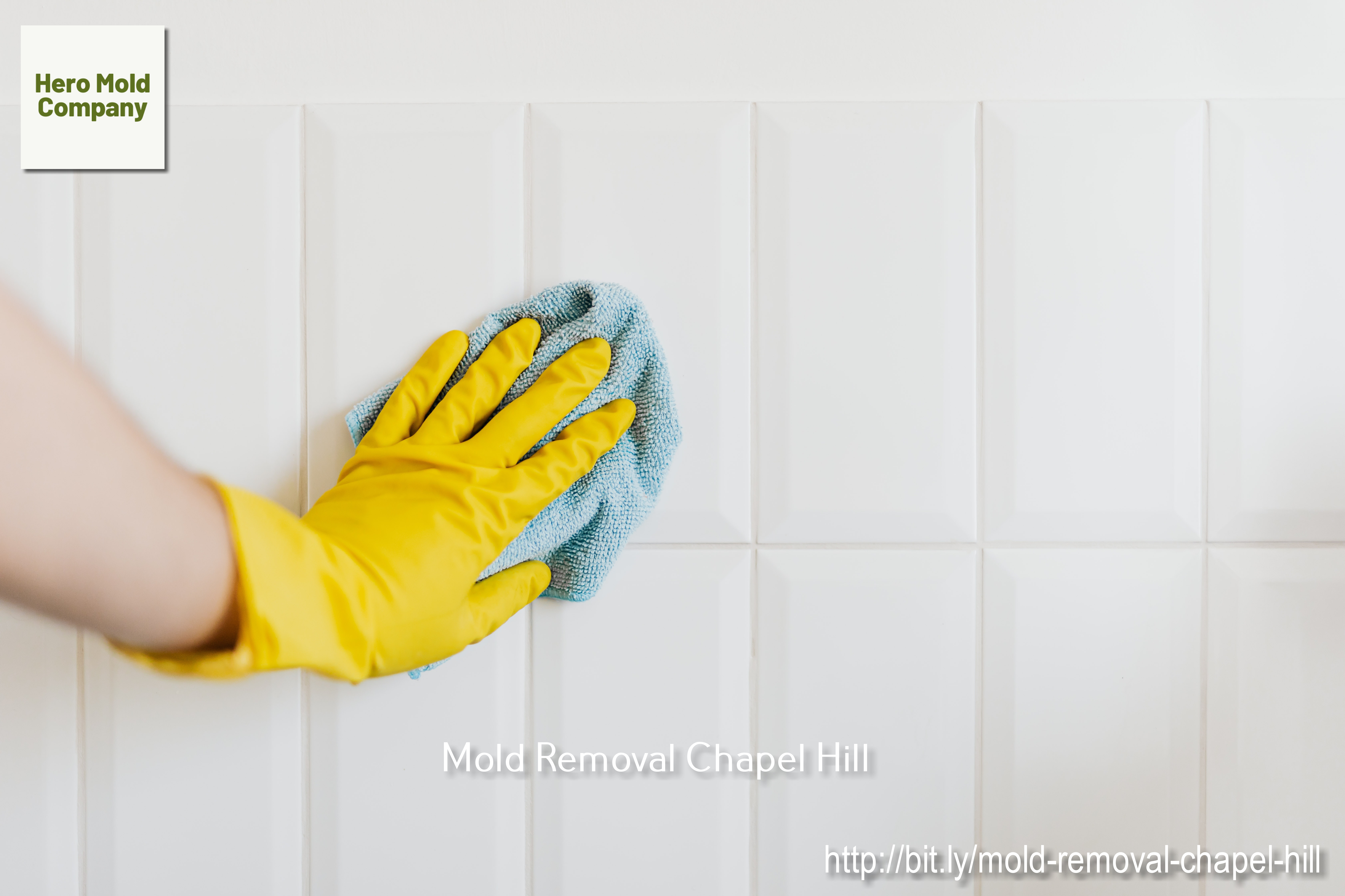 Hero Mold Company States Why Hiring a Reliable Mold Removal Company Is in One's Best Interests