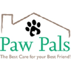 Can Dogs Get the Flu Answered By Northern VA Dog Walking Company
