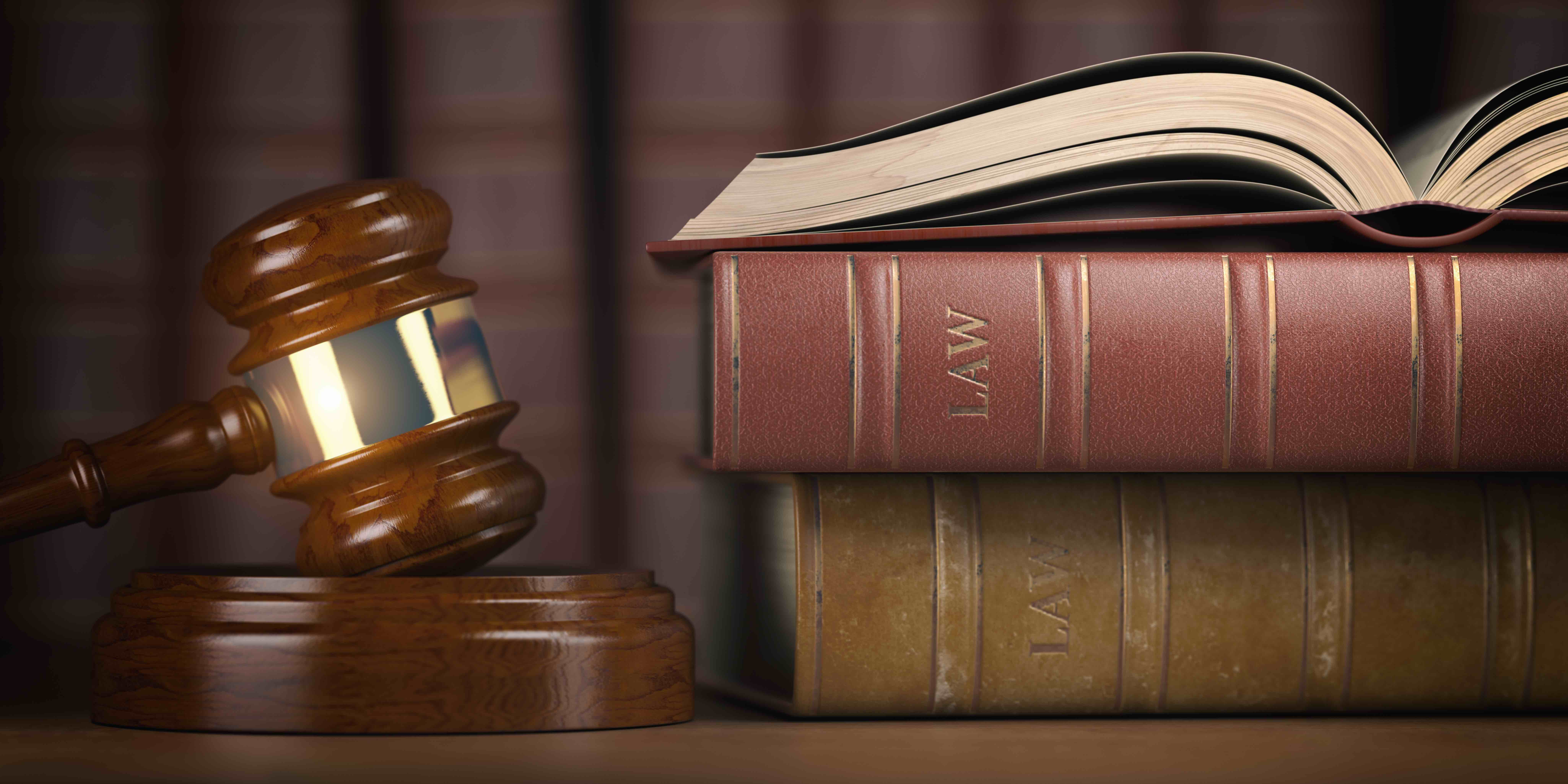 Constitutional Lawyers Examine Validity of Seimas Resolution