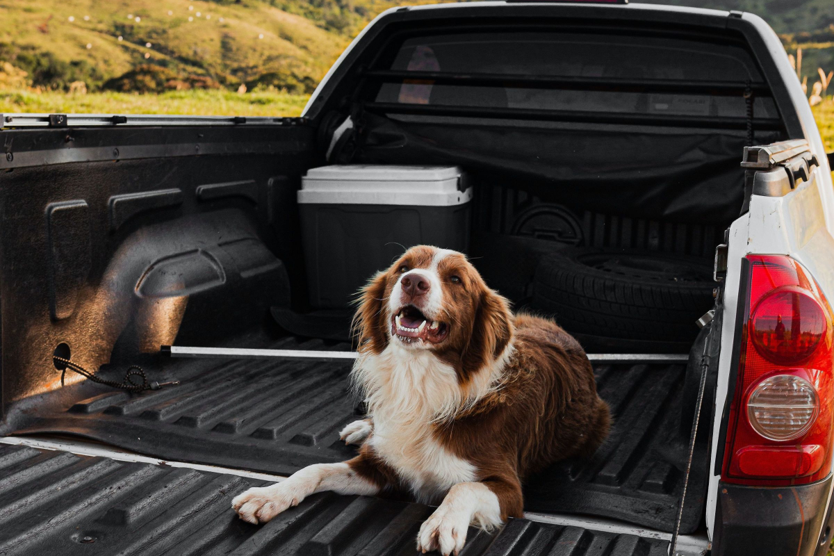 Realtimecampaign.com Asks What Are the Benefits of Using a Silverado Bed Cover?