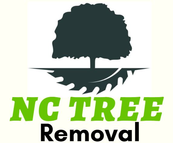 Carolina Tree Removal Pros of Sanford Provides Tree Removal Services for Lee County Residents
